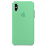 Nugarėlė Apple iPhone X/XS Silicone Case Spearmint